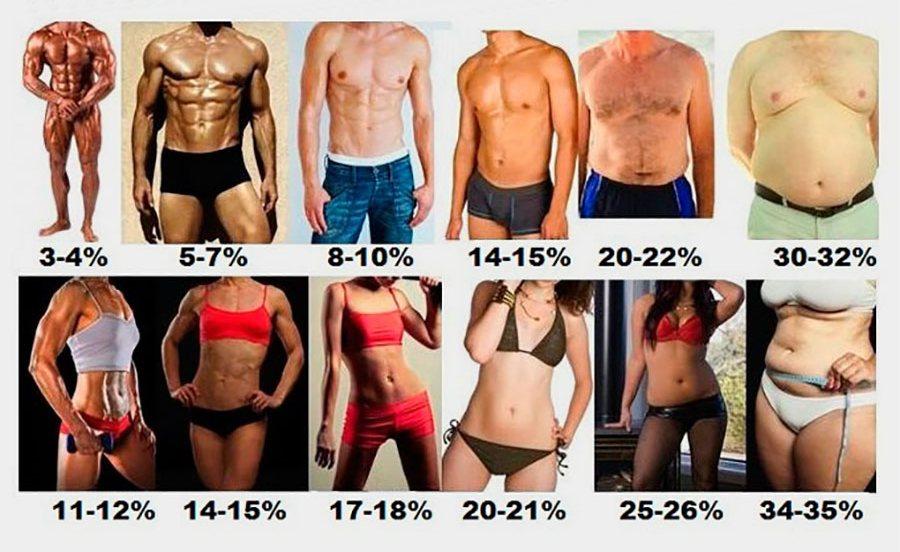 Как выглядят люди с разным процентом жира